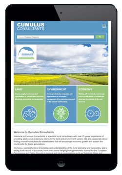 Cumulus Consultants website designed by Piefinch